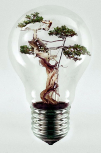 Tree Lightbulb